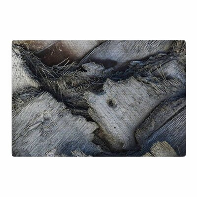 Nick Nareshni Palm Tree Crossover Black/Gray Area Rug Rug Size: 2 x 3