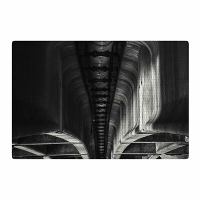 Nick Nareshni Under Bridge Arches Black/White Area Rug Rug Size: 4 x 6