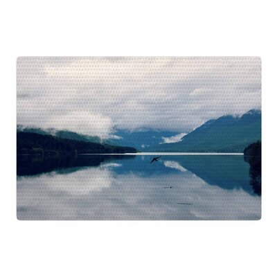 Robin Dickinson Flight Photography Blue/White Area Rug Rug Size: 2 x 3