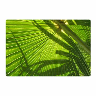 Rosie Palm Shadows Green/Lime Area Rug Rug Size: 2 x 3