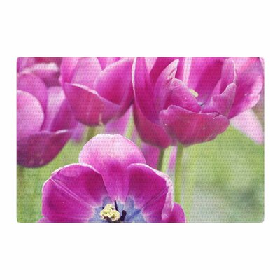 Sylvia Cook Tulips Photography Purple/Pink Area Rug Rug Size: 2 x 3