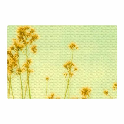 Sylvia Coomes Abstract Wild Flowers Green/Yellow Area Rug Rug Size: 2' x 3'