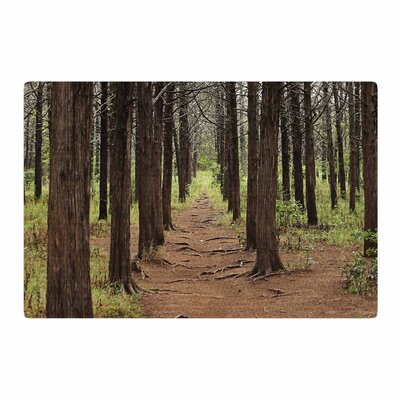 Sylvia Coomes Parallel Forest Photography Green/Brown Area Rug Rug Size: 2 x 3