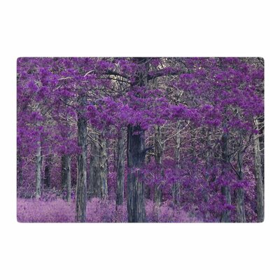 Sylvia Coomes Purple Tree Photography Purple/Black Area Rug Rug Size: 2 x 3