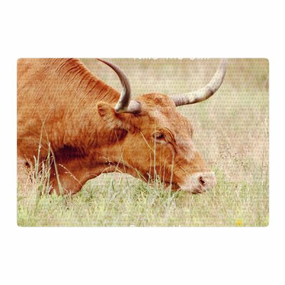 Sylvia Coomes Take The Bull By The Horns Photography Brown/Green Area Rug Rug Size: 2' x 3'