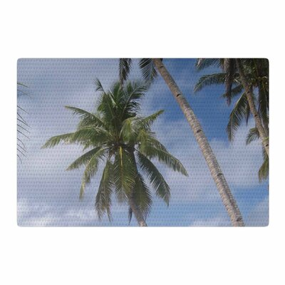 Susan Sanders Sky Ocean Palm Trees Photography Blue/Green Area Rug Rug Size: 2 x 3