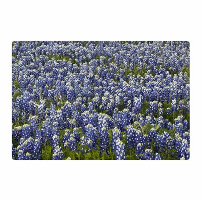 Susan Sanders Flower Lavender Fields Photography Purple Area Rug Rug Size: 2 x 3