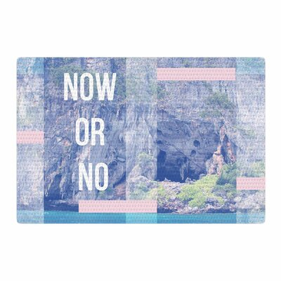 Vasare Nar Now or No Mixed Media Blue/Pink Area Rug Rug Size: 2 x 3