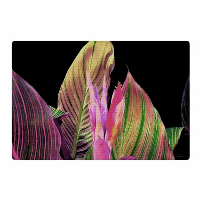 Victoria Krupp In The Dark Digital Black/Magenta Area Rug Rug Size: 4 x 6