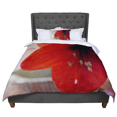 Robin Dickinson Count Your Blessings Floral Comforter Size: Queen