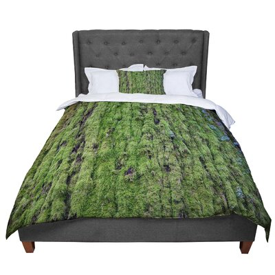 Susan Sanders Emerald Moss Nature Comforter Size: Twin
