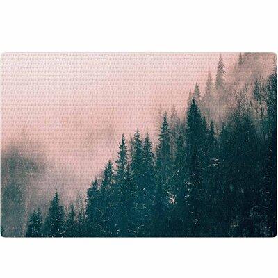 Suzanne Carter Haze Digital Pink/Teal Area Rug Rug Size: 2' x 3'