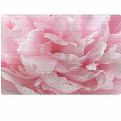 Suzanne Harford Enchanting Photography Pink Pastel Area Rug Rug Size: 4 x 6
