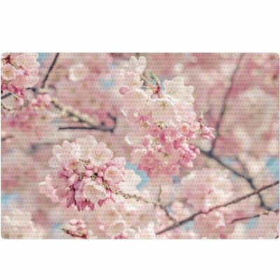 Suzanne Harford Cherry Blossoms Photography Pink Pastel Area Rug Rug Size: 2 x 3