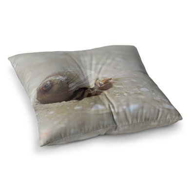 Hermit Crab Photography by Angie Turner Floor Pillow Size: 26 x 26