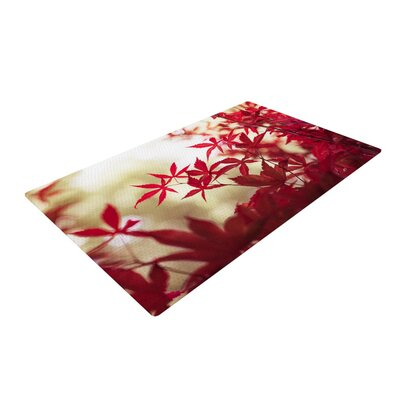 Ann Barnes September Afternoon Leaves Red Area Rug Rug Size: 2 x 3