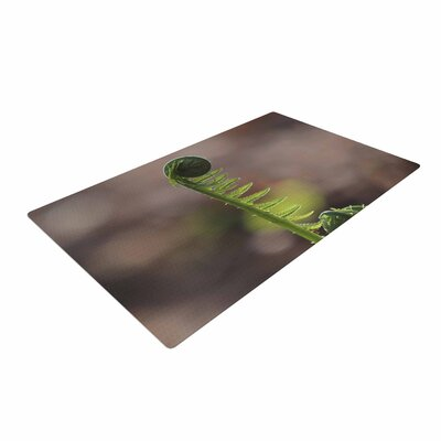 Angie Turner Fern Top Green/Nature Area Rug Rug Size: 2 x 3