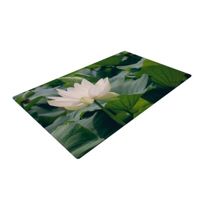 Catherine McDonald White Lotus Green/White Area Rug Rug Size: 2 x 3
