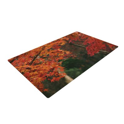 Catherine McDonald Autumn Sonata Orange/Green Area Rug Rug Size: 4 x 6