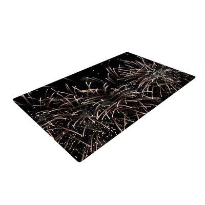 Catherine McDonald Fireworks Black/White Area Rug Rug Size: 2 x 3