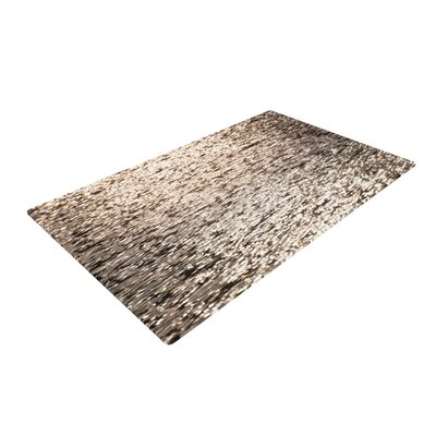 Catherine McDonald Golden Hour Water Reflection Gray Area Rug Rug Size: 2 x 3