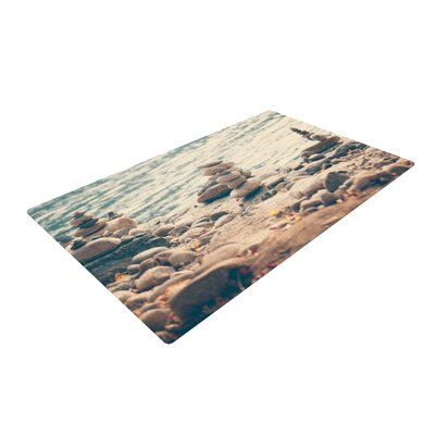 Catherine McDonald River Cairns Brown/Blue Area Rug Rug Size: 4 x 6