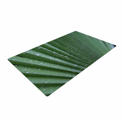 Cyndi Steen Palm Frond Green/Nature Area Rug Rug Size: 4 x 6