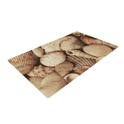 Heidi Jennings Shells Tags Tan Area Rug Rug Size: 4 x 6