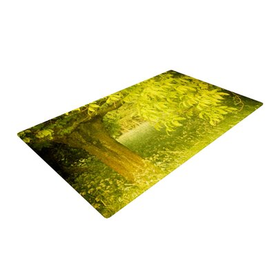 Iris Lehnhardt Summer Tree Green Area Rug Rug Size: 2 x 3