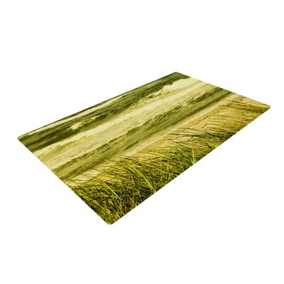 Iris Lehnhardt Dunes and Waves Water Green Area Rug Rug Size: 4 x 6