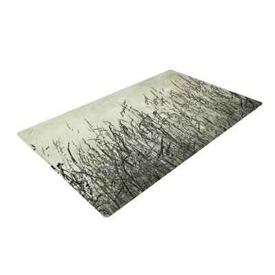 Iris Lehnhardt Summer Grasses Neutral Gray Area Rug Rug Size: 2 x 3