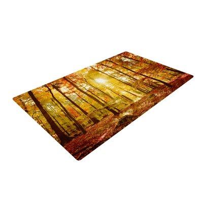 Iris Lehnhardt Sun Flooded Yellow/Orange Area Rug Rug Size: 2 x 3