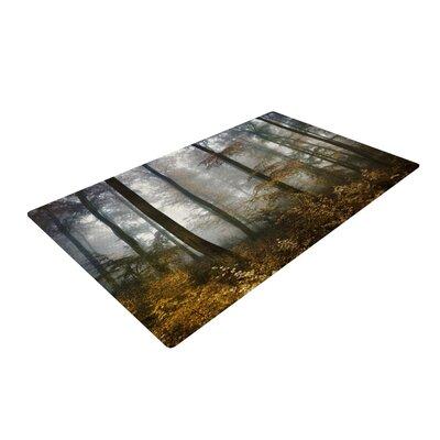 Iris Lehnhardt Forest Mystics Brown/Gray Area Rug Rug Size: 2 x 3