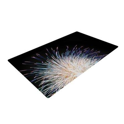Jillian Audrey Firework Black/Pastel Area Rug Rug Size: 2 x 3