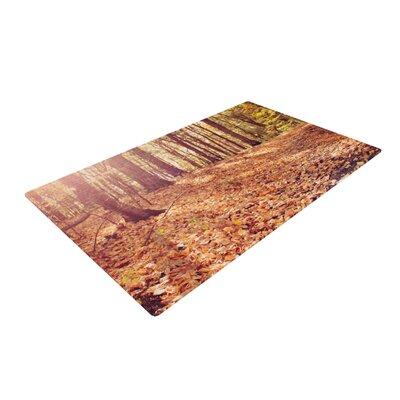 Jillian Audrey Autumn Hike Orange/Brown Area Rug Rug Size: 4 x 6