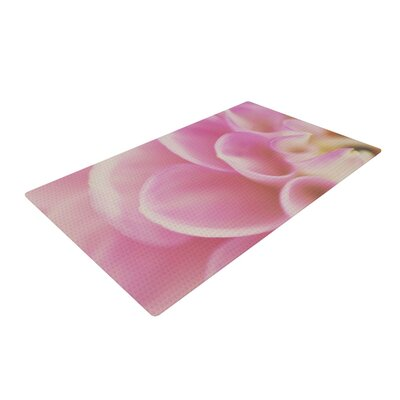 Laura Evans Up Close & Personal Floral Pink Area Rug Rug Size: 2 x 3