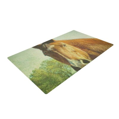 Robin Dickinson CT Green/Brown Area Rug Rug Size: 2 x 3