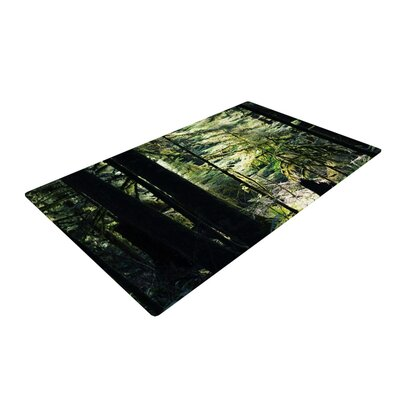 Robin Dickinson Enchanted Forest Green Area Rug Rug Size: 4 x 6