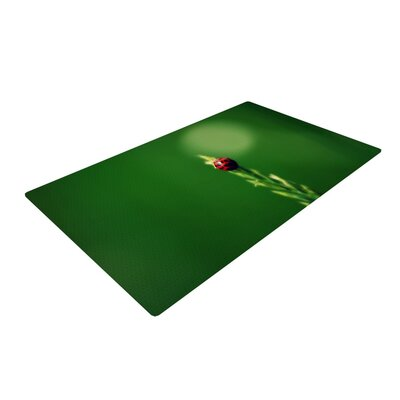Robin Dickinson Ladybug Hugs Green Area Rug Rug Size: 2 x 3