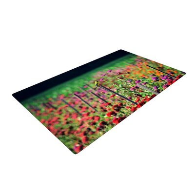 Robin Dickinson Live in the Sunshine Green/Red Area Rug Rug Size: 4 x 6