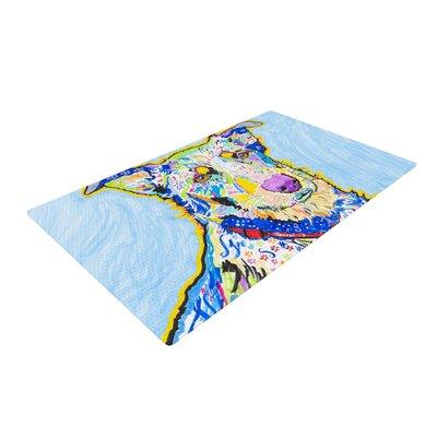 Rebecca Fischer Becca Blue/Rainbow Area Rug Rug Size: 2 x 3
