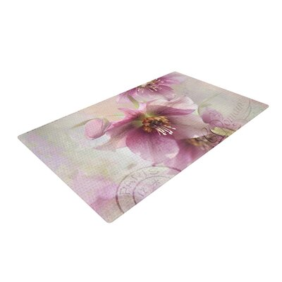 Sylvia Cook Hellabore Pink/Petals Area Rug Rug Size: 2 x 3