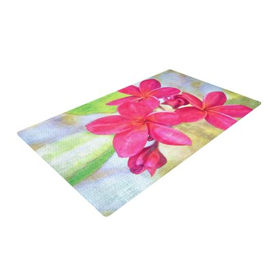 Sylvia Cook Plumeria Flower Petals Pink Area Rug Rug Size: 4 x 6