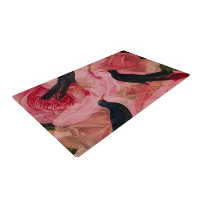 Suzanne Carter Song Bird Cush Red/Black Area Rug Rug Size: 4 x 6