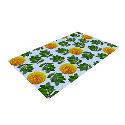 Sreetama Ray More Marigold Green/Blue Area Rug Rug Size: 4 x 6