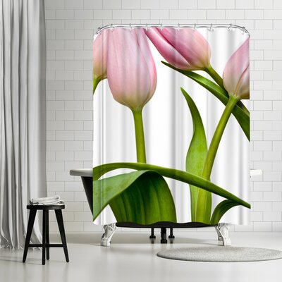 Maja Hrnjak Tulips 2 Shower Curtain