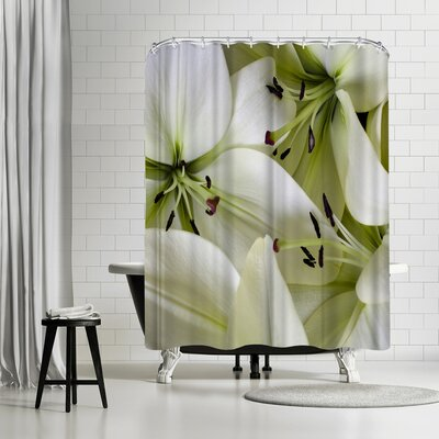 Maja Hrnjak Lilies Shower Curtain