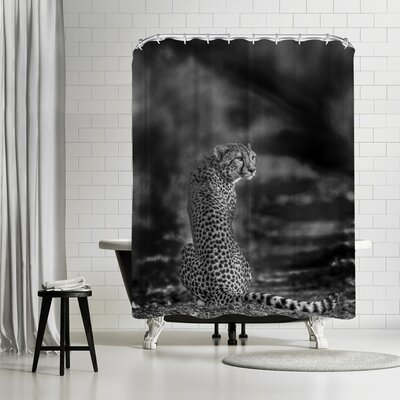 1x The Look Back Shower Curtain