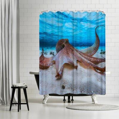 1x Octopus Shower Curtain