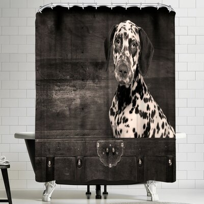 Maja Hrnjak Dalmatian Dog Puppy Shower Curtain